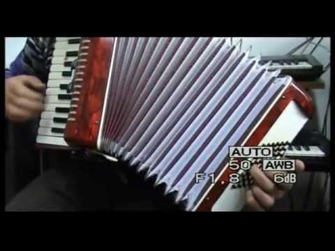 PROVA fisarmonica stella 48 bassi