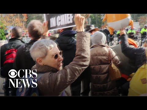 Anti-Trump protesters clash with WWII vet at NYC Veterans Day Parade