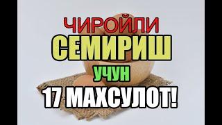 ✔️CHIROYLI SEMIRISH UCHUN 17 MAHSULOT - Семириш учун нима килиш керак?