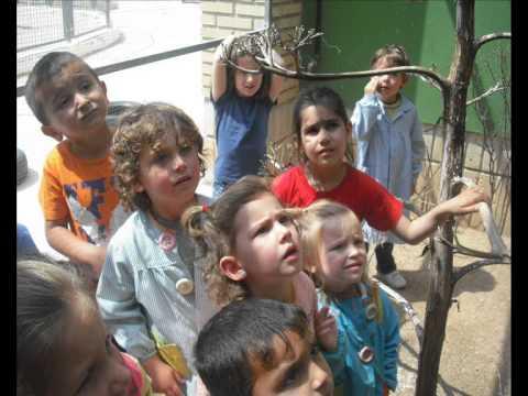 Educació Infantil a Montaverner