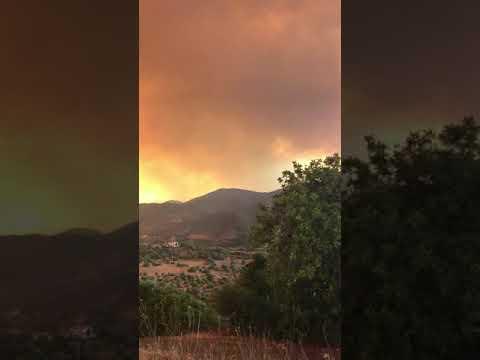 Incêndio de Silves 08-08-2018