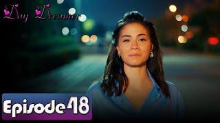 Day Dreamer   Early Bird in Hindi-Urdu Episode 48   Erkenci Kus   Turkish Dramas