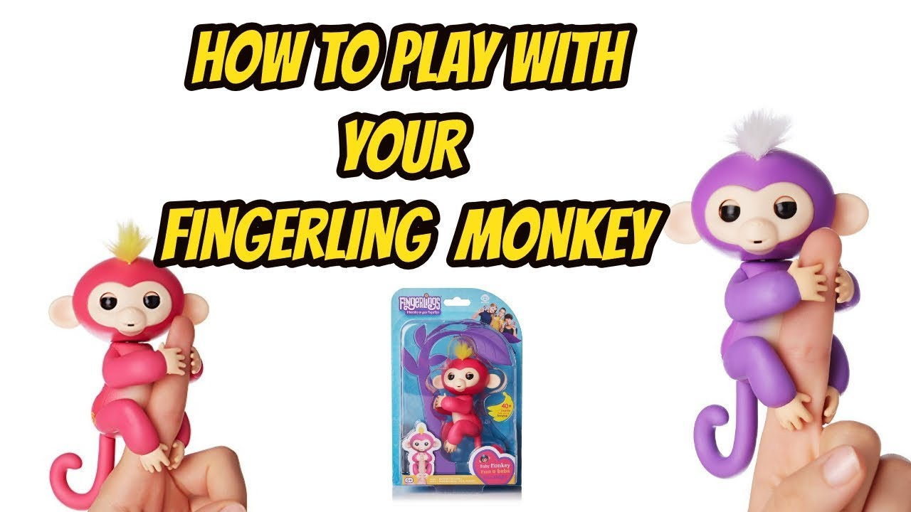 How To Play With Your Fingerling Toy Monkey Youtube