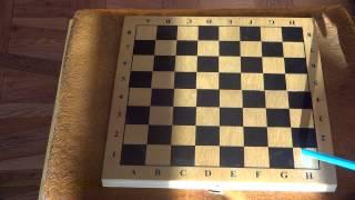Шахматы с нуля 1 урок
