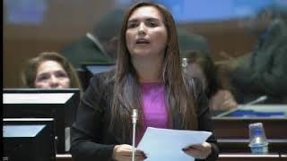 Sesión 482 del Pleno Continuación (04-01-2018)