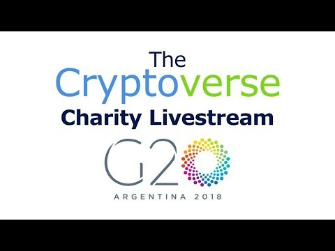 G20 Press Conference / Charity Livestream In Aid Of Ana Olesky