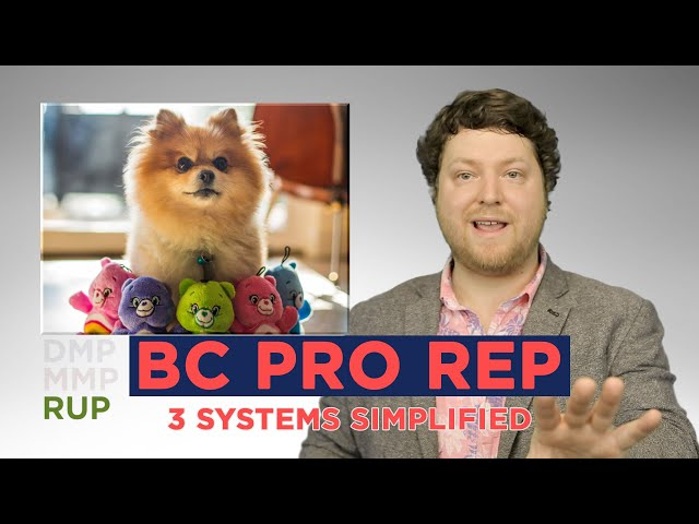 BC's Proportional Representation (Pro Rep) mail in referendum has been referred to as confusing AF.  Instead of complaining I recorded an Easy, entertaining, & slightly funny breakdown of the three PR Options the folks of British Columbia will be voting for.  My personal favourite option is Rural Urban Proportional (RUP), but I'd be happy with Mixed Member Proportional and Duel Member Proportional. Make an informed decision this vote is important.