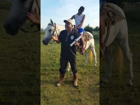 Donald Lee Teaches Kids About Horses