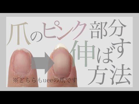 美爪になるためにやった5つの事【ハイポニキウムの育て方】