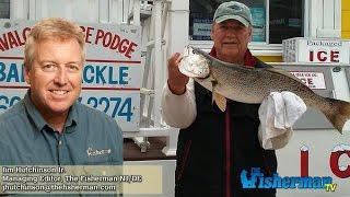 May New Jersey Delaware Bay Fishing Report Jim Hutchinson Jr