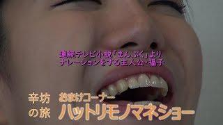 【辛坊治郎公式チャンネル】「辛坊の旅」おまけコンテンツ 細かすぎて伝...