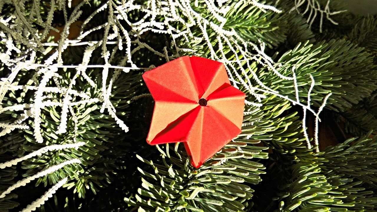 Sterne Basteln Weihnachtsdeko Selber Machen Deko Ideen Mit Flora Shop