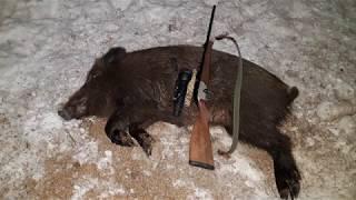 Охота на кабана зимой с лабаза 2019
