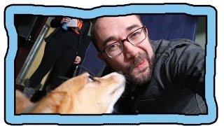 Cute Dog Something Something Clickbait OMG (ft. Hank Green)