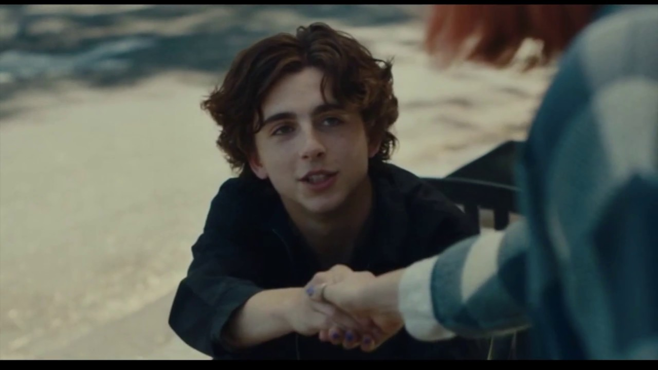 Timothée Chalamet saying