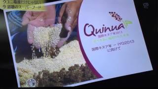 スーパー植物 キヌア 現地民の調理法