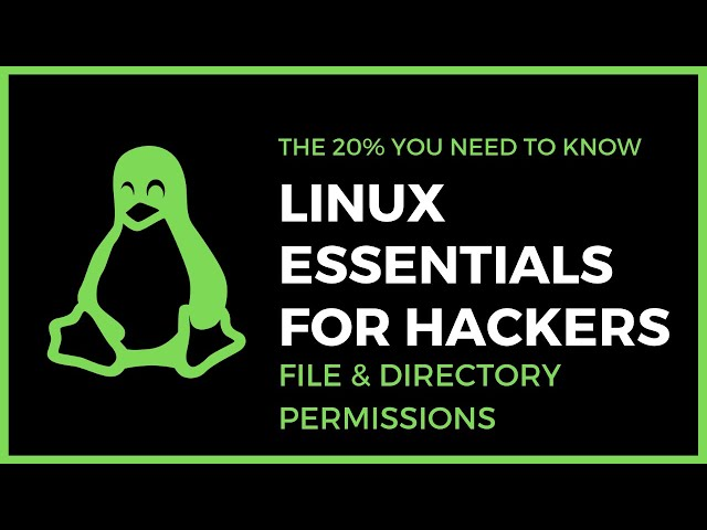 Linux Essentials For Hackers - #4 - File & Directory Permissions