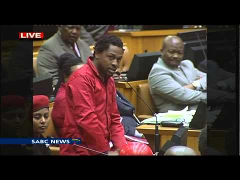 EFF disrupts parliament