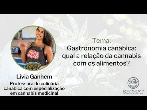 Gastronomia canábica: qual a relação da cannabis com os alimentos?
