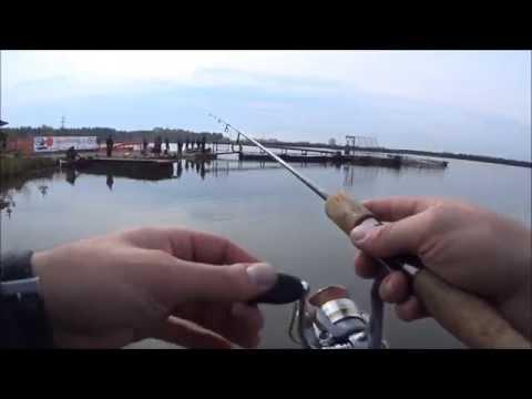 платная рыбалка в подмосковье на форель бисерово
