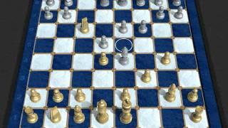 Shakespeare vs Waitzkin (Chessmaster Grandmaster Edition)