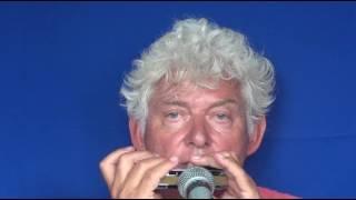 Tims Tiny Tunes #298 | FUNK, level 2, Harmonica play-along lessons | Jazz harmonica licks (lr)