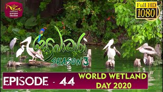 Sobadhara - Sri Lanka Wildlife Documentary | 2020-01-31 | Wetland Day ( තෙත්බිම් දිනය ) Thumbnail