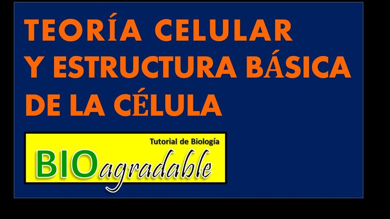 Episodio La Célula 3 Teoría Celular Y Estructura Básica De La Célula