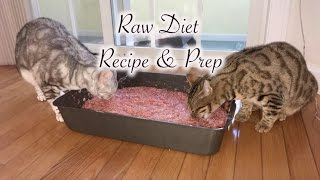 Raw Cat Food Recipe
