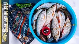 Рыбалка на Угличском водохранилище. Плотва, поплавок, фидер. День второй. [salapinru].