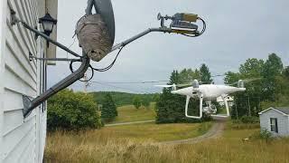 Drone vs Bald Faced Hornets