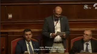 Intervento del senatore Simone Pillon sui padri separati