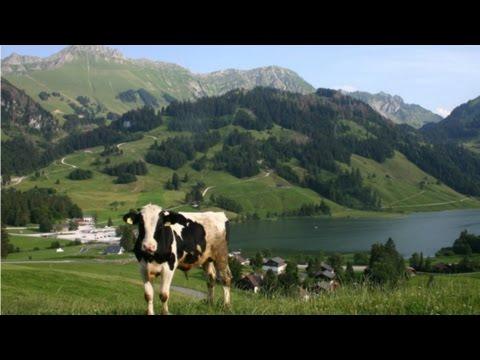 Lyoba - Fryburger Chuereihe (Le Ranz des vaches) , Alphorn- Trio