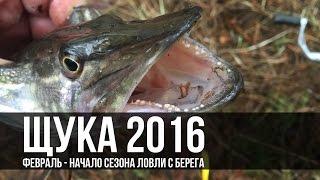 Рыбалка в Черкассах - щука с берега - Открытие сезона 2016