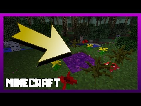 How To Make A Portal To The Twilight Forest In Minecraft!