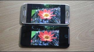 Apple iPhone 7 vs Samsung Galaxy S7 - Camera Comparison!