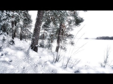 Wintersun - Loneliness (Winter) Official Lyric Video