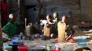 Senegal: Stop Forced Child Begging