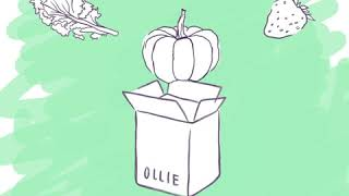 Meet Ollie