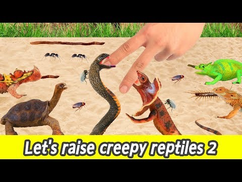[EN] Let's raise creepy reptiles 2, reptile and insect names for children, collecta figuresㅣCoCosToy