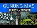 GUNUNG MAS / PUNCAK BOGOR