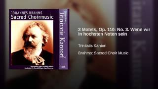 3 Motets, Op. 110: No. 3. Wenn wir in hochsten Noten sein