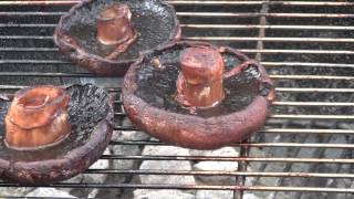 How To Grill Portabello Mushrooms: A Bbq Dragon Tutorial