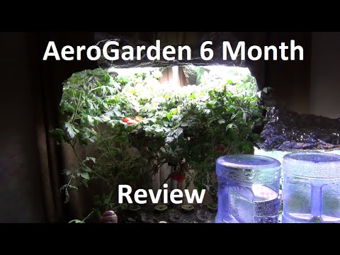 AeroGarden 6 Month Update!  Cherry tomatoes, kale, peppers, lettuce, herbs!