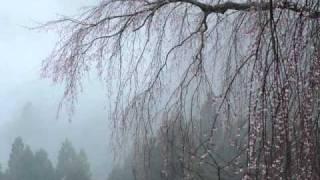 前奏曲 作品28の15「雨だれ」 ショパン thumbnail