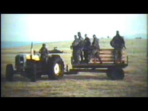 Commando Engineers in the Falklands War: Version II