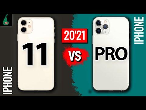 IPHONE 11 vs iPhone 11 PRO