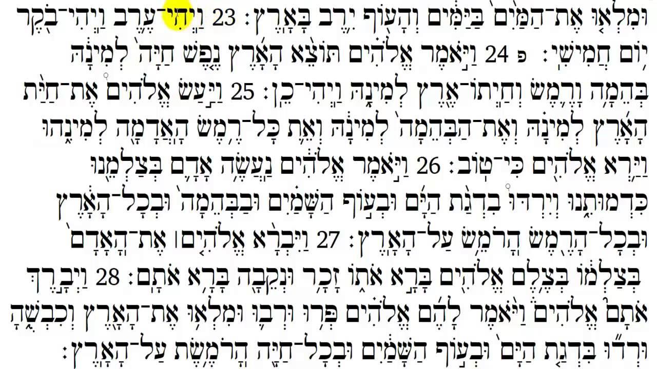 Torah Reading - Genesis Chapter 1