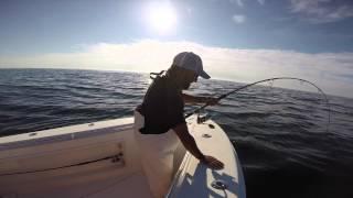 "Bluefin Tuna on Shimano Ocea, Shimano Twin Power 14000 and a 10"" RonZ Lure"