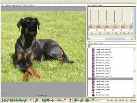 Create talking animals with Voice-O-Matic (Maya Edition)